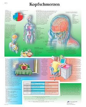 Kopfschmerzen, Lehrtafel, 3B Scientific, medishop.de