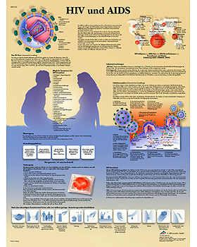 HIV und AIDS, Lehrtafel, 3B Scientific, medishop.de