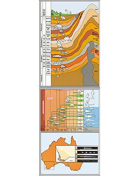 Entstehung und Evolution der Lebewesen Teil I, 24 Stück, 3B Scientific, medishop.de