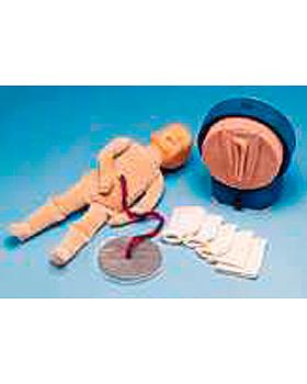 Geburtssimulator mit 5 Gebärmutterhals- Modellen, 7-teilig, 3B Scientific, medishop.de