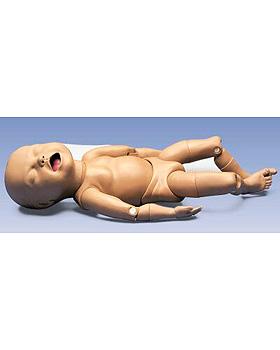 Gelenkiger Fetus, 3B Scientific, medishop.de