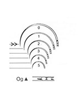 Augennadeln, Typ Og, Figur 0, Dreikantspitze, Federöhr, Inhalt 12 Stück, Allgaier Instrumente, medishop.de
