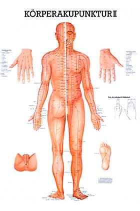 anat. Lehrtafel: Körperakupunktur II 70 x 100 cm, laminiert, Rüdiger Anatomie, medishop.de