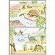 Entstehung und Evolution der Lebewesen Teil III, 30 Stück